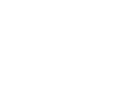 Adris Jewellers Logo
